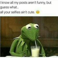 Love yall 😂😂: I know all my posts aren't funny but  guess what..  all your selfies ain't cute Love yall 😂😂