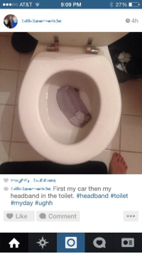 Fell In The Toilet
