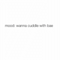 mood: fuck off: mood: wanna cuddle with bae mood: fuck off