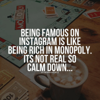 BEING FAMOUS ON  INSTAGRAM IS LIKE  BEING RICH IN MONOPOLY  ITS NOT REAL SO  CALM DOWN Ouch haha-From our partners @thewisepeople @thewisepeople @thewisepeople @thewisepeople-lebanesememes