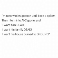 """I will burn this apartment to the ground!!! (@hilarious.ted): I'm a nonviolent person until I see a spider  Then I turn into Al-Capone, and  """"I want him DEAD!  I want his family DEAD!  I want his house burned to GROUND!"""" I will burn this apartment to the ground!!! (@hilarious.ted)"""