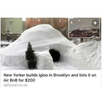 Funny, Brooklyn, and New Yorker: New Yorker builds igloo in Brooklyn and lists it on  Air BnB for $200  dailymail.co.uk Extremely Boss Move @KrispyShorts