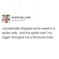 """Bill Nye, Lmao, and Love: YA BOY BILL NYE  ayaboybillnye  i accidentally dropped some weed in a  spider web.. and the spider said """"my  nigga"""" and gave me a fist bump lmao Spiders love weed... It's science!  @sciencetagram 👉🏻 @sciencetagram @sciencetagram 👉🏻 @sciencetagram"""