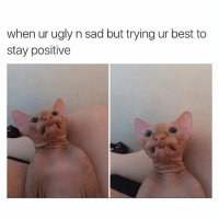 Sad Meme: when ur ugly n sad but trying ur best to  stay positive