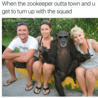 Animals, Funny, and Funny Animals: When the zookeeper outta town and u get to turn up with the squad Lmao