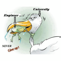 Never ever give up 💪💪: Engineer...  NEVER  Give up!  University Never ever give up 💪💪