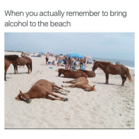 Drinking + sun + swimming = DEATH: When you actually remember to bring alcohol to the beach Drinking + sun + swimming = DEATH