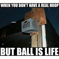 💯 nbamemes: When you don't have a real hoop but ball is life 💯 nbamemes