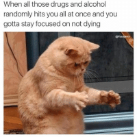 Gotta stay calm Gary: When all those drugs and alcohol  randomly hits you all at once and you  gotta stay focused on not dying  @Fuck erry Gotta stay calm Gary