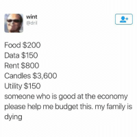 Plz help.: wint  @dril  Food $200  Data $150  Rent $800  Candles $3,600  Utility $150  someone who is good at the economy  please help me budget this. my family is  dying Plz help.