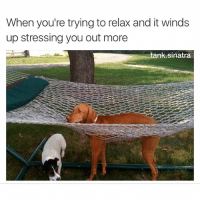9 times out of 10 I have NO business relaxing: When you're trying to relax and it winds  up stressing you out more  tank sinatra 9 times out of 10 I have NO business relaxing