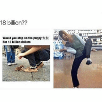 Funny, Puppies, and Puppy: 18 billion??  Would you step on the puppy  For 18 billion dollars Don't kill me 😂😂
