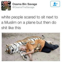 FACTS -(@haremrenaissance): Osama Bin Savage  @Osama The Savage  white people scared to sit next to  a Muslim on a plane but then do  shit like this FACTS -(@haremrenaissance)
