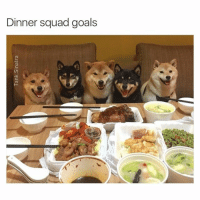 Dinner Squad goals How pissed would you be if you decided to cancel on plans and then you got this picture?