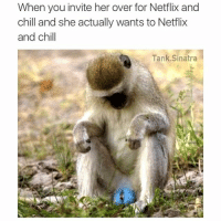 Are people still doing Netflix and chill memes or: When you invite her over for Netflix and chill and she actually wants to Netflix and chill Are people still doing Netflix and chill memes or