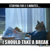 Me after 2-3 minutes of study 😼-memes engineering engineers engineeringmemes: STUDYING FOR 2-3 MINUTES  I SHOULD TAKE  BREAK Me after 2-3 minutes of study 😼-memes engineering engineers engineeringmemes