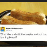 Funny, Aristotle, and Tanning: Aristotle Georgeson  OSTOTLE  What idiot called it the toaster and not the  tanning bread? Someone who didn't think things through