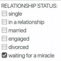 ✅✅✅✅: RELATIONSHIP STATUS  single  in a relationship  married  engaged  divorced  waiting for a miracle ✅✅✅✅