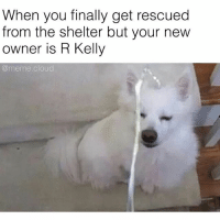 at least he hydrated: When you finally get rescued  from the shelter but your new  owner is R Kelly  @meme cloud at least he hydrated