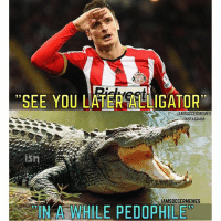 """If You Know What I Mean...😂 Double Tap!   Tag Friends   - - -Great Page >> -  @MYIBRAFACTS: """"SEE YOU LATER ALLIGATOR'  AMSOCCERMEMES  NSTAGRAM  ISM  AMSOCCERMEMES  IN A WHILE PEDOPHILE If You Know What I Mean...😂 Double Tap!   Tag Friends   - - -Great Page >> -  @MYIBRAFACTS"""