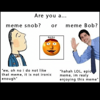 "Which one are you?: Are you a...  meme snob?  Or  meme Bob?  me me  ""ew, oh no i do not like  hahah LOL, epi  that meme, it is not ironic  meme, im  realy  enough""  enjoying this meme"" Which one are you?"
