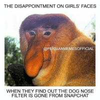justalittlesavage -Follow 🇮🇷@XRX_OFFICIAL🇮🇷 for premium apparel!!: THE DISAPPOINTMENT ON GIRLS' FACES  @PERSIANMEMESOFFICIAL  WHEN THEY FIND OUT THE DOG NOSE  FILTER IS GONE FROM SNAPCHAT justalittlesavage -Follow 🇮🇷@XRX_OFFICIAL🇮🇷 for premium apparel!!