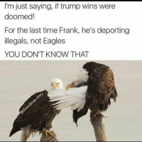 😂😂: I'm just saying, if trump wins were  doomed!  For the last time Frank, he's deporting  illegals, not Eagles  YOU DON'T KNOW THAT 😂😂