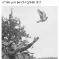 Texting, Text, and What Is: When you send a green text What is this, the dark ages?