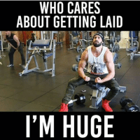 👻 SC: GYMMEMES-👻 SC: GYMMEMES-.-Check out @MAJESTIC_FITNESS-.-workout bodybuilding crossfit strong motivation instalike powerlifting bench deadlift bench gymmemes gymhumor love funny instamood gymmotivation jokes legday girlswholift fitchick fitspo gym fitness bossgirls ufc: CARES  WHO CARES  ABOUT GETTING LAID  I'M HUGE 👻 SC: GYMMEMES-👻 SC: GYMMEMES-.-Check out @MAJESTIC_FITNESS-.-workout bodybuilding crossfit strong motivation instalike powerlifting bench deadlift bench gymmemes gymhumor love funny instamood gymmotivation jokes legday girlswholift fitchick fitspo gym fitness bossgirls ufc