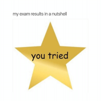 me soon: my exam results in a nutshell  you tried me soon