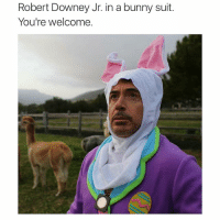 Robert Downey Jr. in a bunny suit.  You're welcome. (@_kevinboner )
