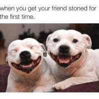 when you get your friend stoned for  the first time. 😭😭😂😂