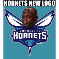 When you're up 3-2 and end up losing the series😐-nbamemes: HORNETS NEW LOGO  CHARLOTTE  HORNETS  ONBAMEMES When you're up 3-2 and end up losing the series😐-nbamemes