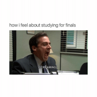 me rn: how i feel about studying for finals  (SCREAMING) me rn