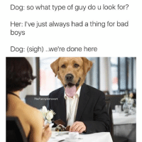 Hahah @shitheadsteve-Side note: Twitter is a meme thieves paradise: Dog: so what type of guy do u look for?  Her: I've just always had a thing for bad  boys  Dog: (sigh) ..we're done here  The Funnyintrovert Hahah @shitheadsteve-Side note: Twitter is a meme thieves paradise