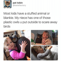 Animals, Anime, and Funny: pat tobin  atastefactory  Most kids have a stuffed animal or  blankie. My niece has one of those  plastic owls u put outside to scare away  birds Adorable 💘💕💞 (Twitter: tastefactory)