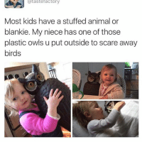 lol: tastefactory  Most kids have a stuffed animal or  blankie. My niece has one of those  plastic owls u put outside to scare away  birds lol