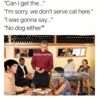 "Cats, Chun-Li, and Dogs: ""Can get the...""  ""I'm sorry, we don't serve cat here.""  ""I was gonna say...""  ""No dog either  toasty memes  gettyimages  107908372 Lmao y'all didn't have to do Chun Li like that 😂😂"