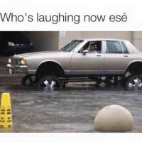 houstonflood: Who's laughing now e  se houstonflood