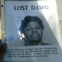 "We miss you dawg: LOST DAWG  was walking with my dawg 2 days ago on Abess Blvd.  when he ran off to play with some other dawgs, haven't  seen him since. He answers to ""dawg"". JaQuan, or just  simply ""Yo"". If found please tell him to hit me up. We miss you dawg"