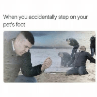accidentally: When you accidentally step on your  pet's foot