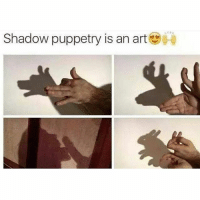 25+ Best Puppetry Memes | a Href Memes, Shadows Memes, the