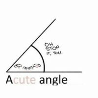 Oh Stop: OH  STOP  IT, YOU  Acute angle