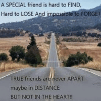 Double Tap if you agree ❤️-TAG all your best buddies 😘💞-Go follow @thekapilshow -The most loved laughter show ever.-@thekapilshow -@thekapilshow-@thekapilshow-@thekapilshow: A SPECIAL friend is hard to FIND,  Hard to LOSE And impossible to FORGET  TRUE friends are never APART  maybe in DISTANCE  BUT NOT IN THE HEART!! Double Tap if you agree ❤️-TAG all your best buddies 😘💞-Go follow @thekapilshow -The most loved laughter show ever.-@thekapilshow -@thekapilshow-@thekapilshow-@thekapilshow