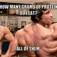 Because gains.-.-@doyoueven -: HOW MANY GRAMS OF PROTEIN  DO EAT?  ALL OF THEM Because gains.-.-@doyoueven -
