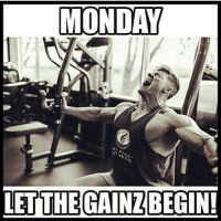 What are YOU training today?-.-@doyoueven -: MONDAY  LET THE GAINZBEGIN! What are YOU training today?-.-@doyoueven -