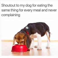 My PUPPER is mvp ( Most valuable PUPPER ): Shoutout to my dog for eating the  same thing for every meal and never  complaining My PUPPER is mvp ( Most valuable PUPPER )