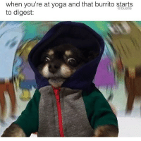 Credit: @bustle: when you're at yoga and that burrito starts  to digest: Credit: @bustle