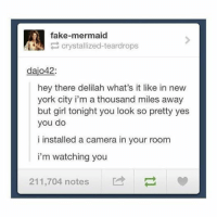 Fake, Funny, and Girls: fake-mermaid  crystallized-teardrops  dajo42.  hey there delilah what's it like in new  york city i'm a thousand miles away  but girl tonight you look so pretty yes  you do  i installed a camera in your room  i'm watching you  211,704 notes