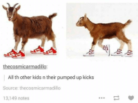 pumped up kicks: the cosmicarmadillo  All th other kids n their pumped up kicks  Source: thecosmicarmadillo  13,149 notes